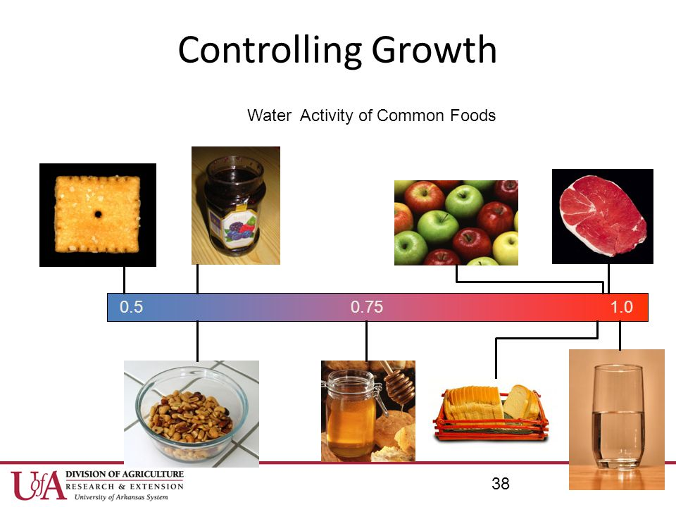 Water Activity of Common Foods
