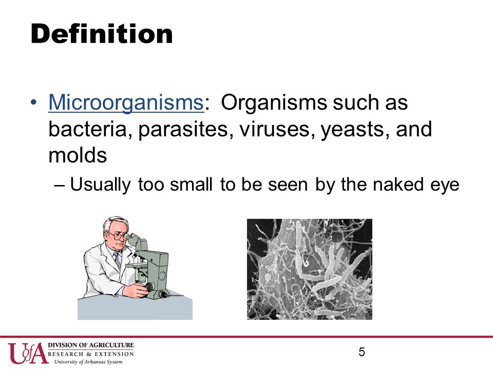 Definition Microorganisms: Organisms such as bacteria, parasites, viruses, yeasts, and molds. Usually too small to be seen by the naked eye.