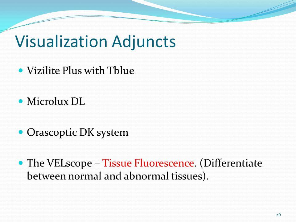 Visualization Adjuncts