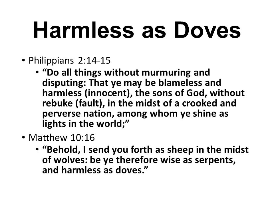 Harmless as Doves Philippians 2:14-15
