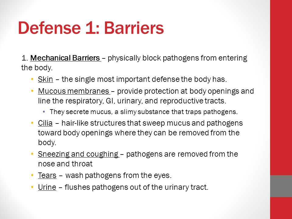 Defense 1: Barriers 1. Mechanical Barriers – physically block pathogens from entering the body.