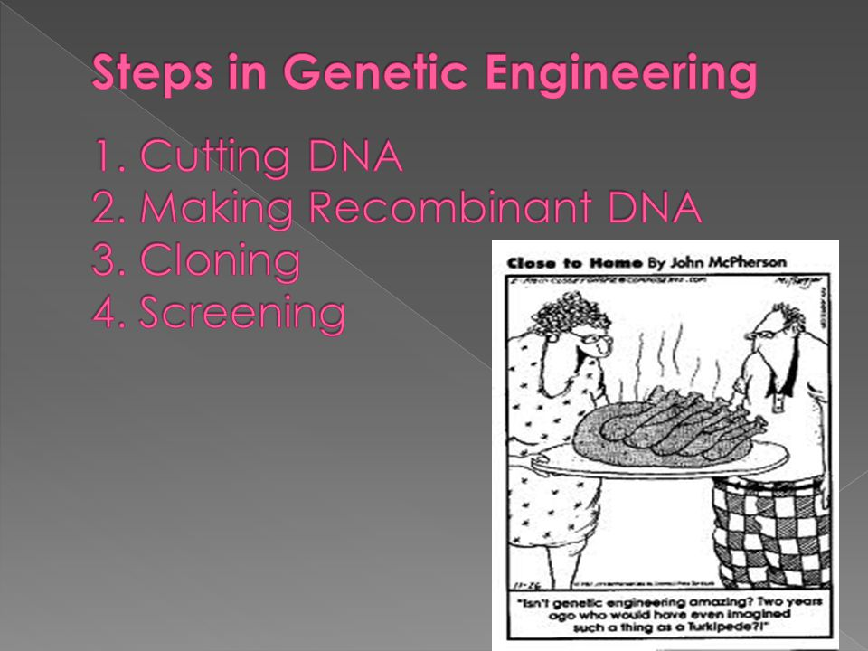 Steps in Genetic Engineering 1. Cutting DNA 2. Making Recombinant DNA 3. Cloning 4. Screening