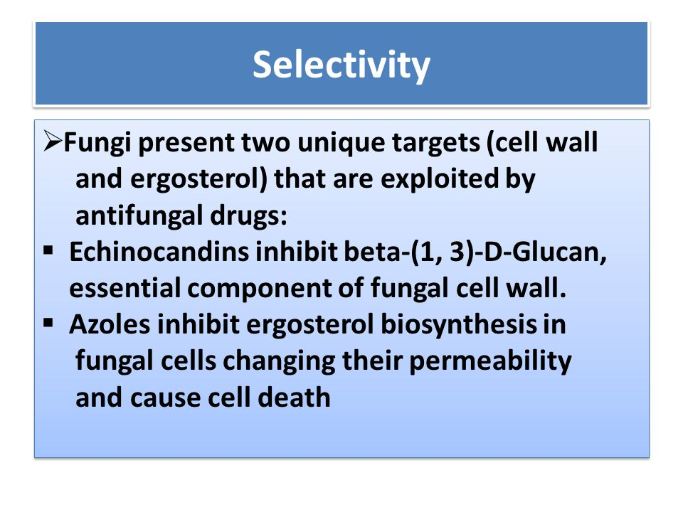 Selectivity Fungi present two unique targets (cell wall