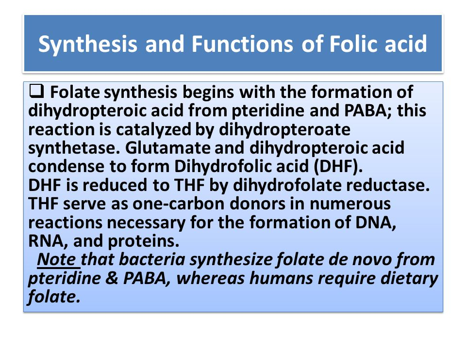 Synthesis and Functions of Folic acid