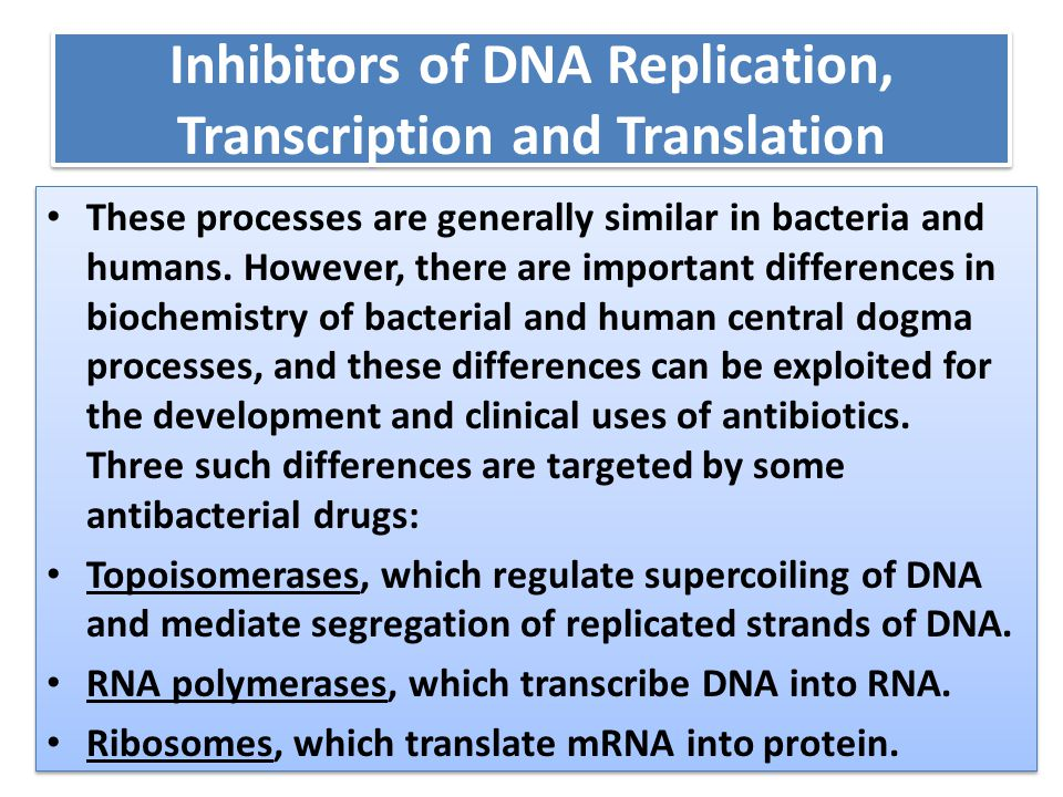 Inhibitors of DNA Replication, Transcription and Translation