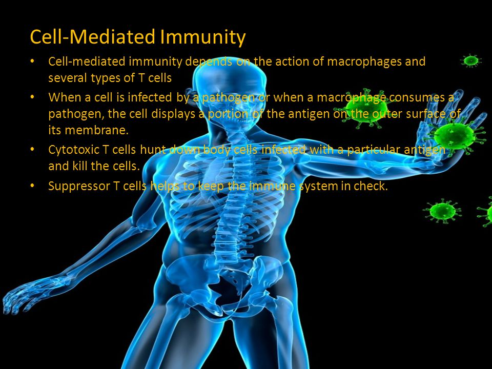 Cell-Mediated Immunity