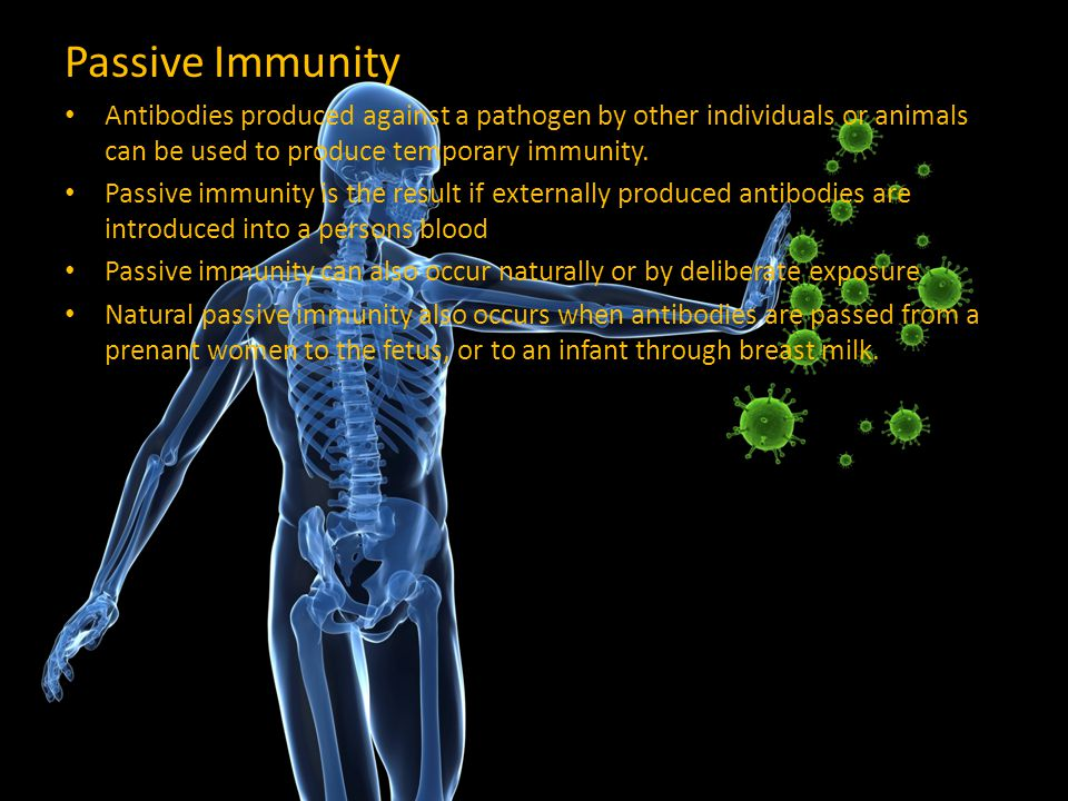 Passive Immunity Antibodies produced against a pathogen by other individuals or animals can be used to produce temporary immunity.