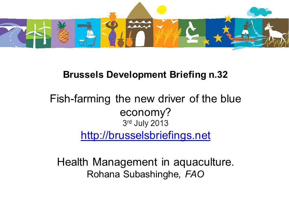 Brussels Development Briefing n