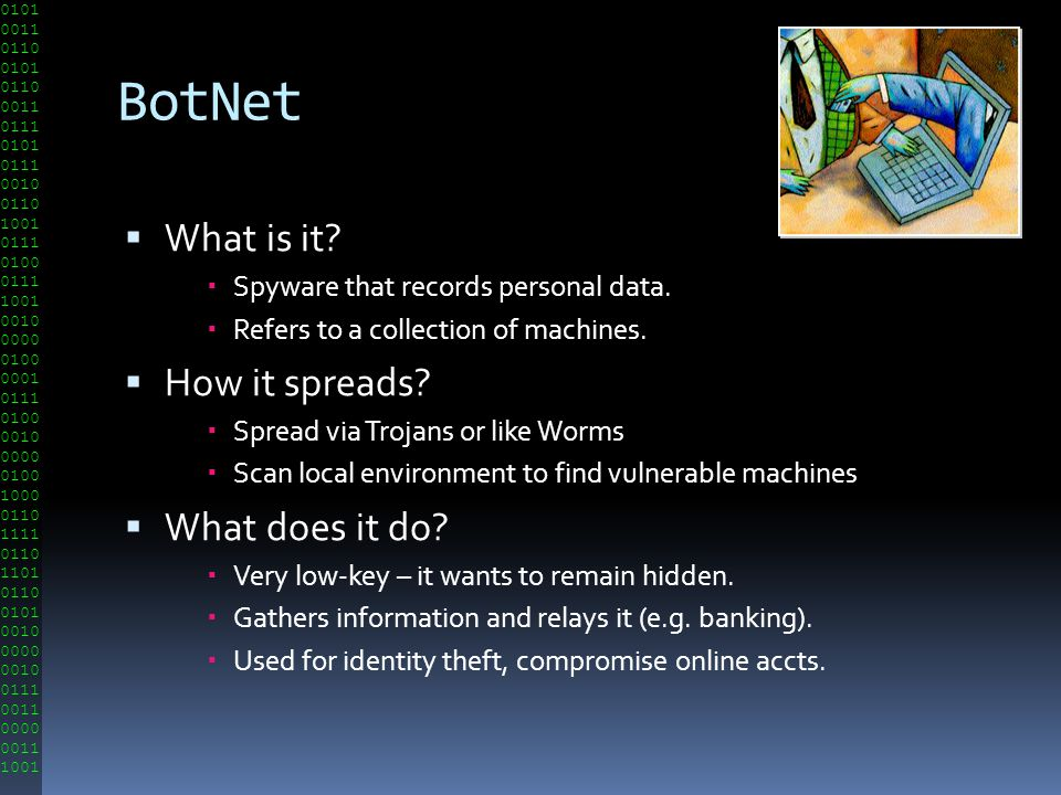 BotNet What is it How it spreads What does it do