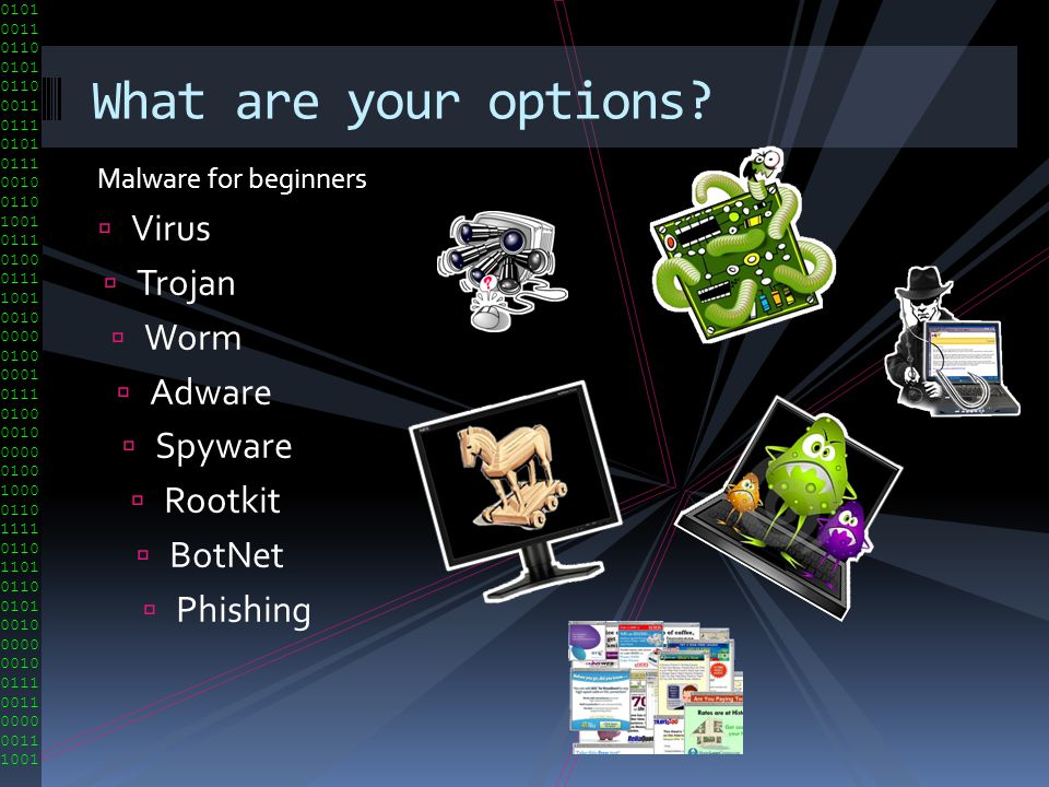 What are your options Virus Trojan Worm Adware Spyware Rootkit BotNet