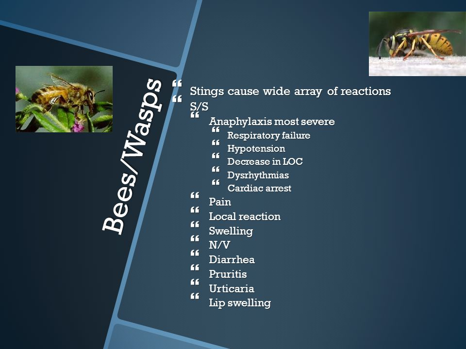 Bees/Wasps Stings cause wide array of reactions S/S