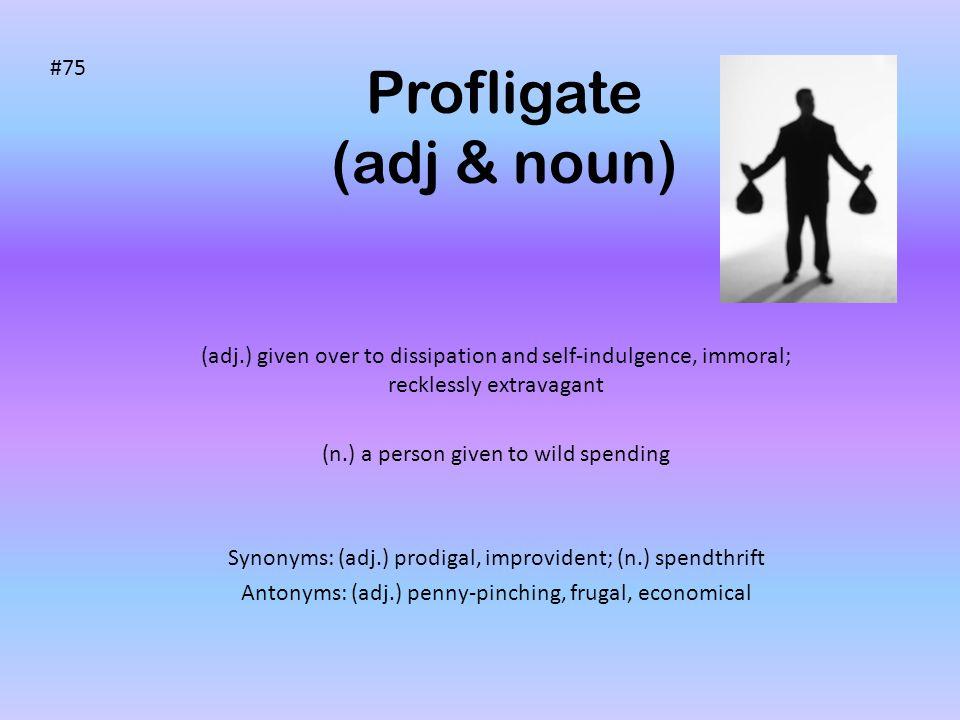 Profligate (adj & noun)