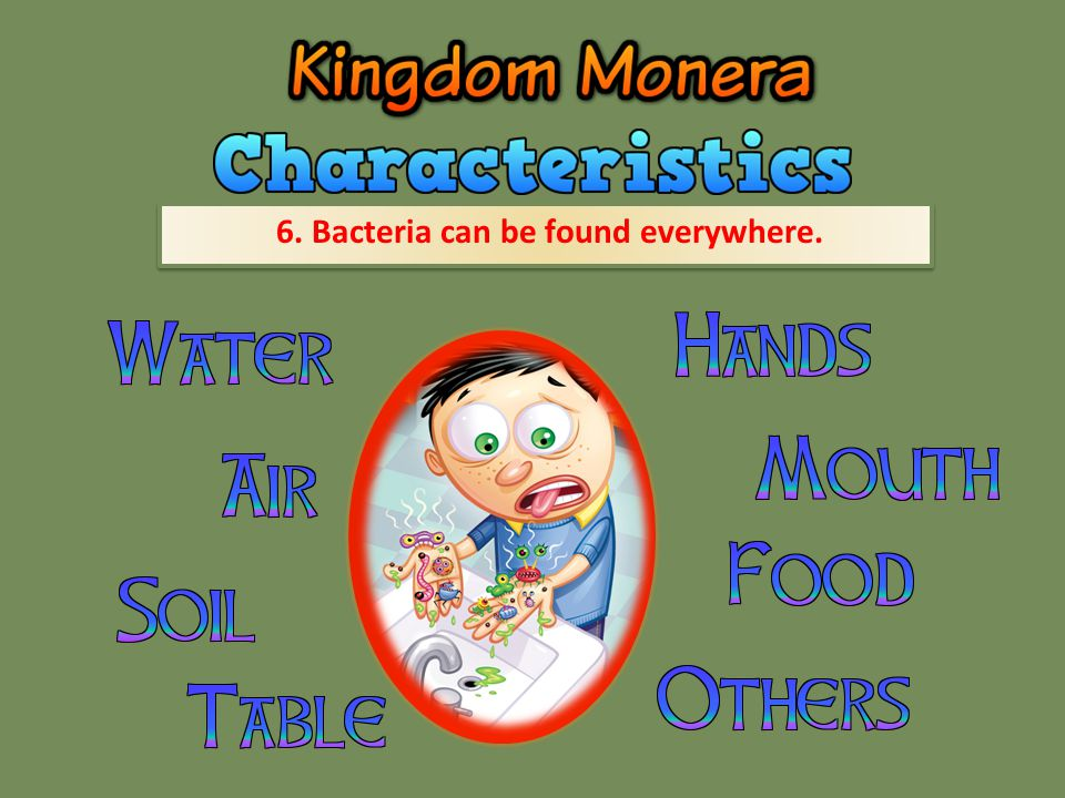 6. Bacteria can be found everywhere.
