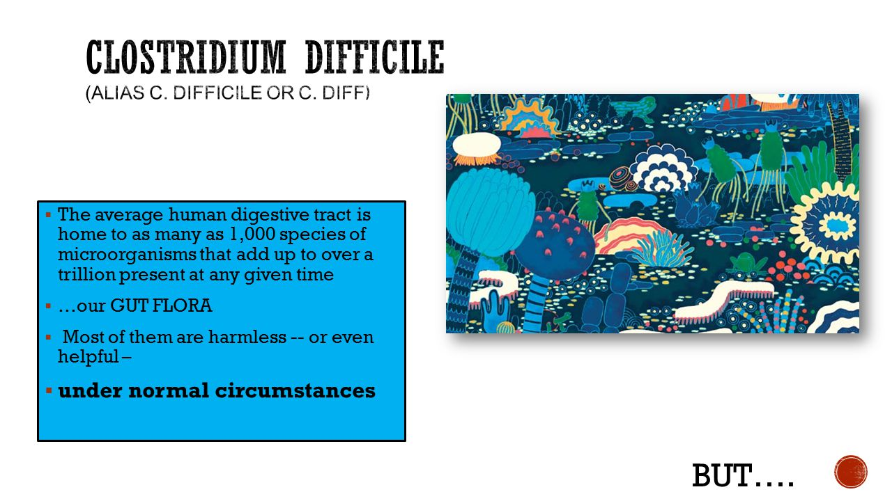 Clostridium difficile (Alias C. difficile or C. diff)