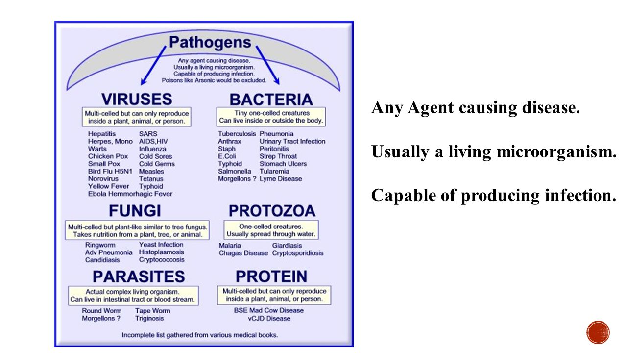 Any Agent causing disease.