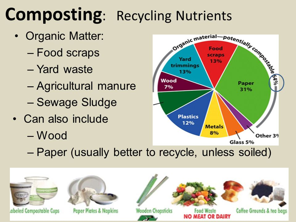 Composting: Recycling Nutrients