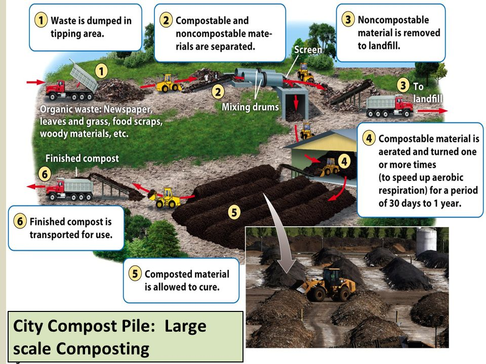 City Compost Pile: Large scale Composting