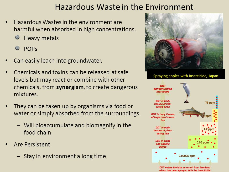 Hazardous Waste in the Environment