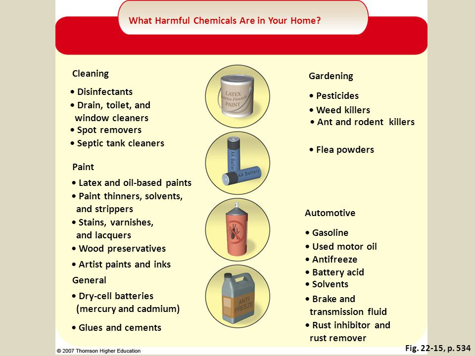 What Harmful Chemicals Are in Your Home