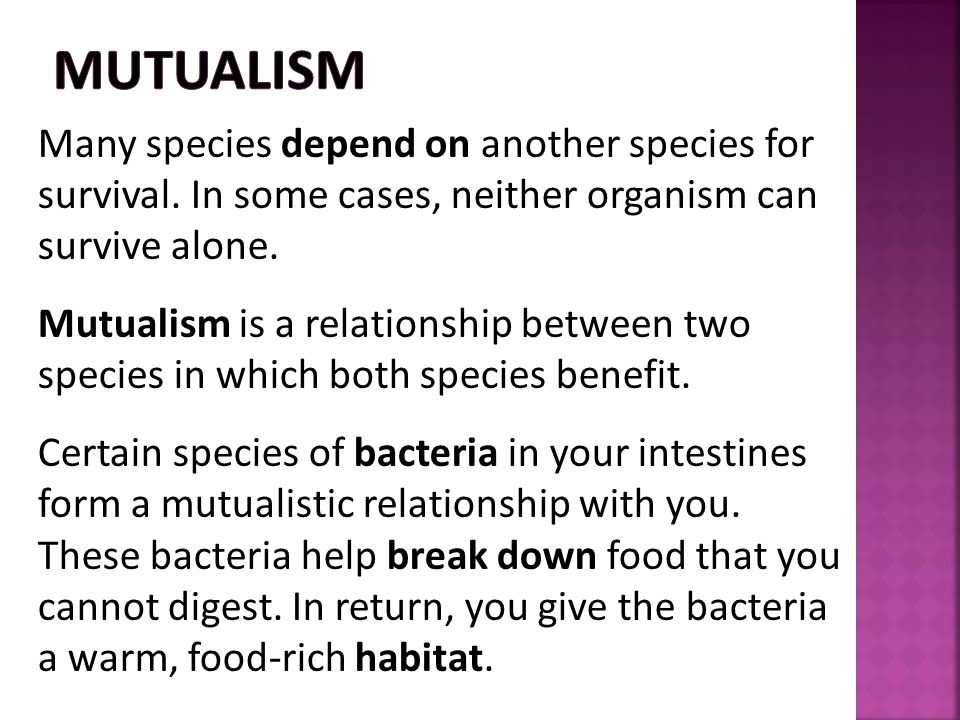 Mutualism Many species depend on another species for survival. In some cases, neither organism can survive alone.
