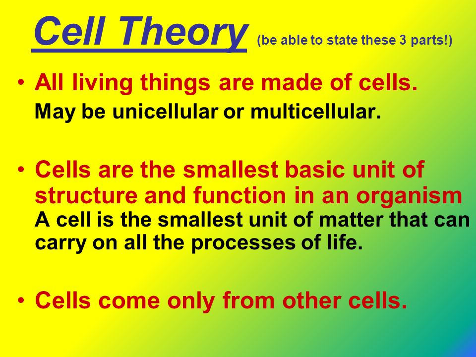 Cell Theory (be able to state these 3 parts!)