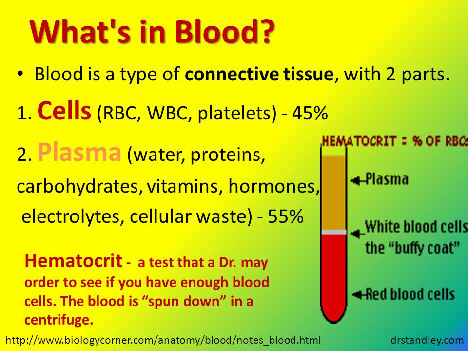 What s in Blood Blood is a type of connective tissue, with 2 parts.