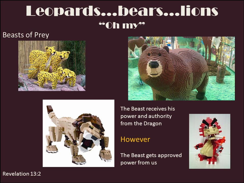 Leopards…bears…lions
