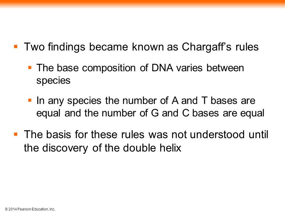 Two findings became known as Chargaff's rules