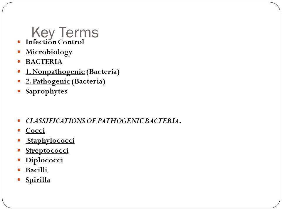 Key Terms Infection Control Microbiology BACTERIA