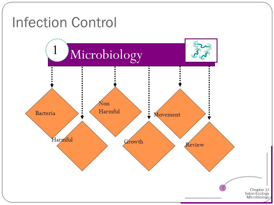 Infection Control 1 Microbiology Non Harmful Bacteria Movement Harmful