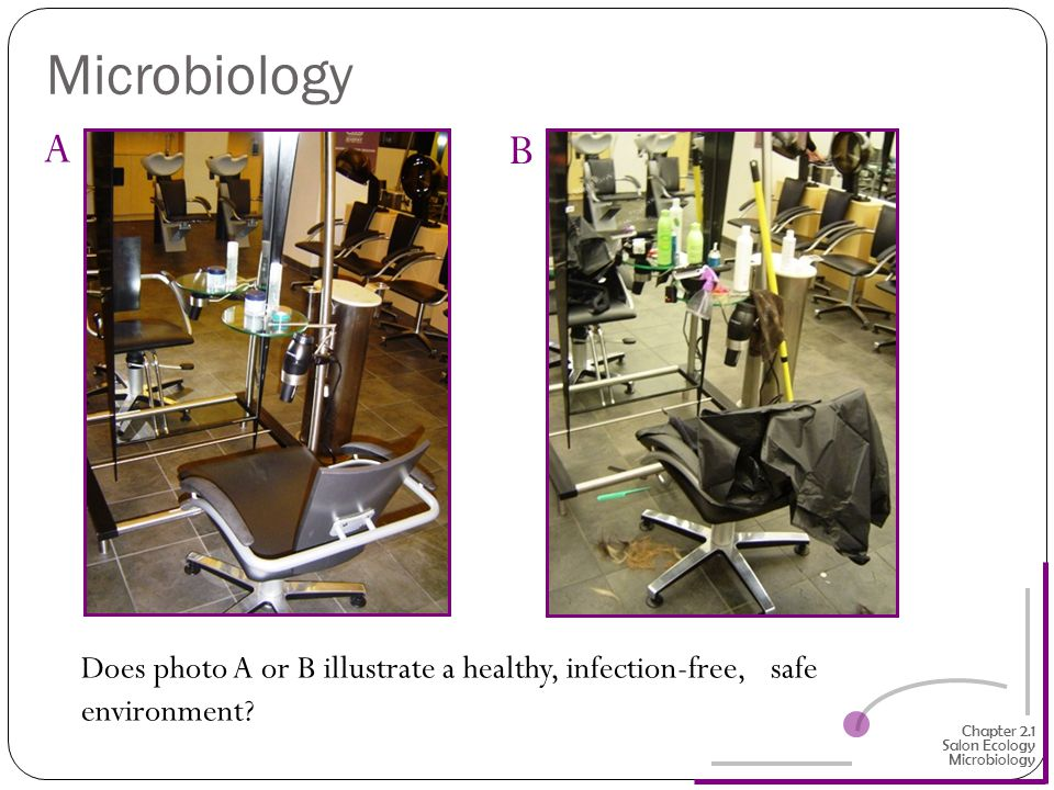 Microbiology A. B. Does photo A or B illustrate a healthy, infection-free, safe environment Chapter 2.1 Salon Ecology.