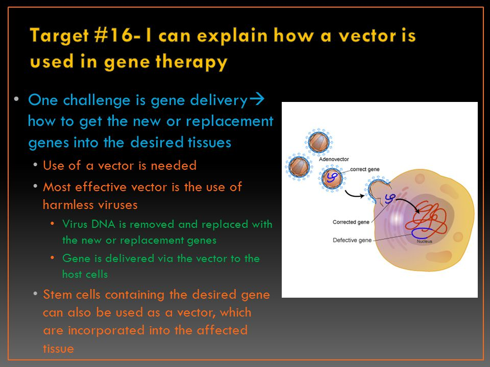 Target #16- I can explain how a vector is used in gene therapy
