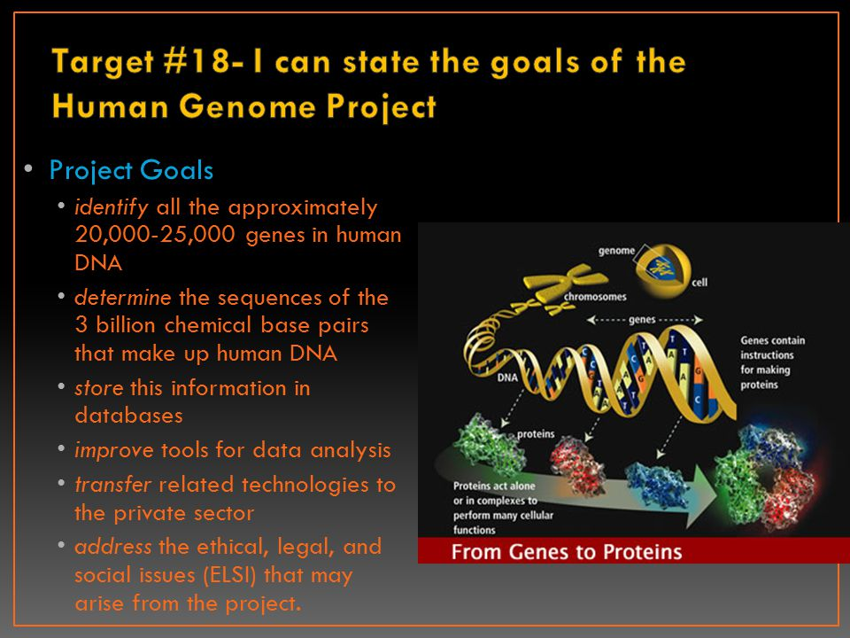 Target #18- I can state the goals of the Human Genome Project