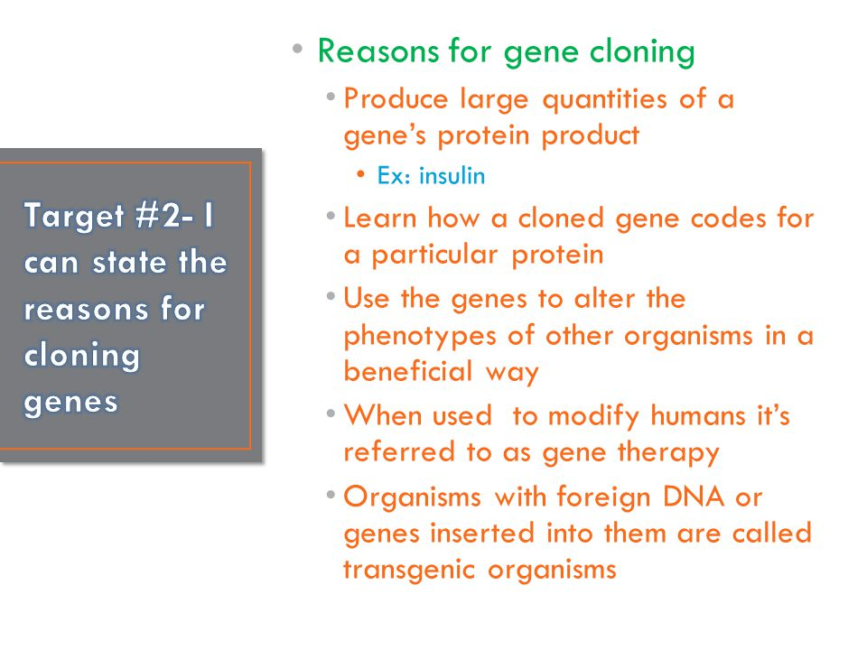 Target #2- I can state the reasons for cloning genes