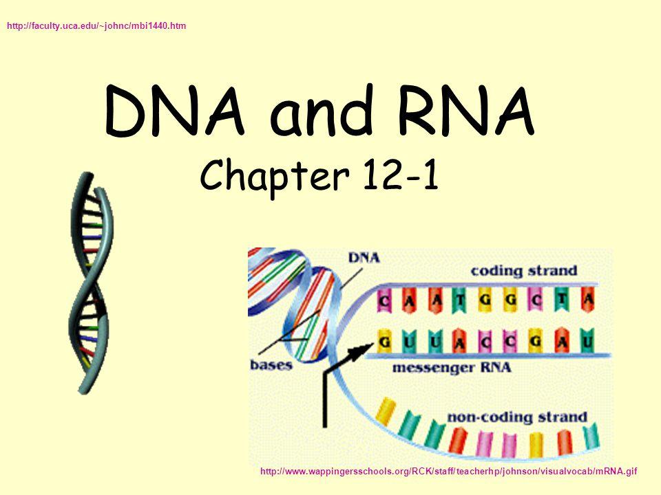 DNA and RNA Chapter 12-1 http://faculty.uca.edu/~johnc/mbi1440.htm