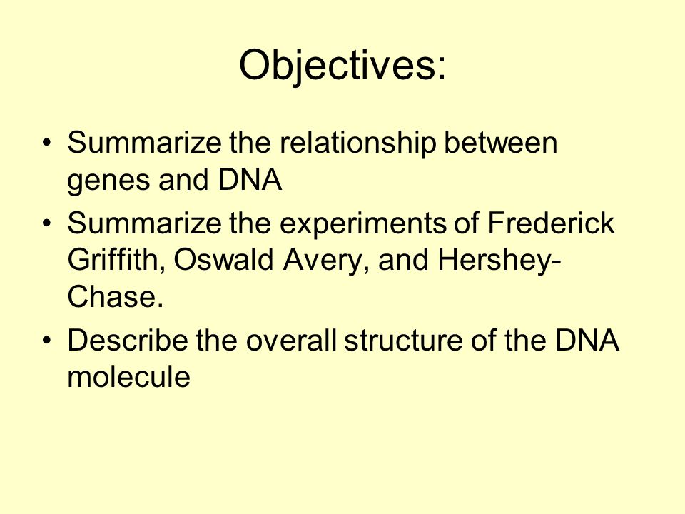 Objectives: Summarize the relationship between genes and DNA