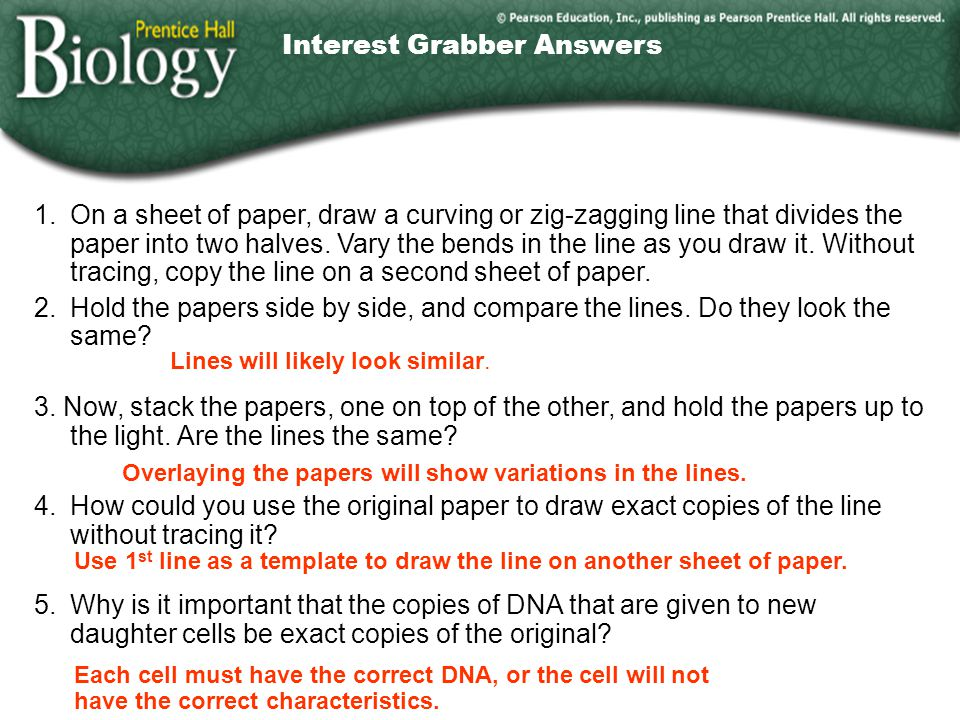 Interest Grabber Answers