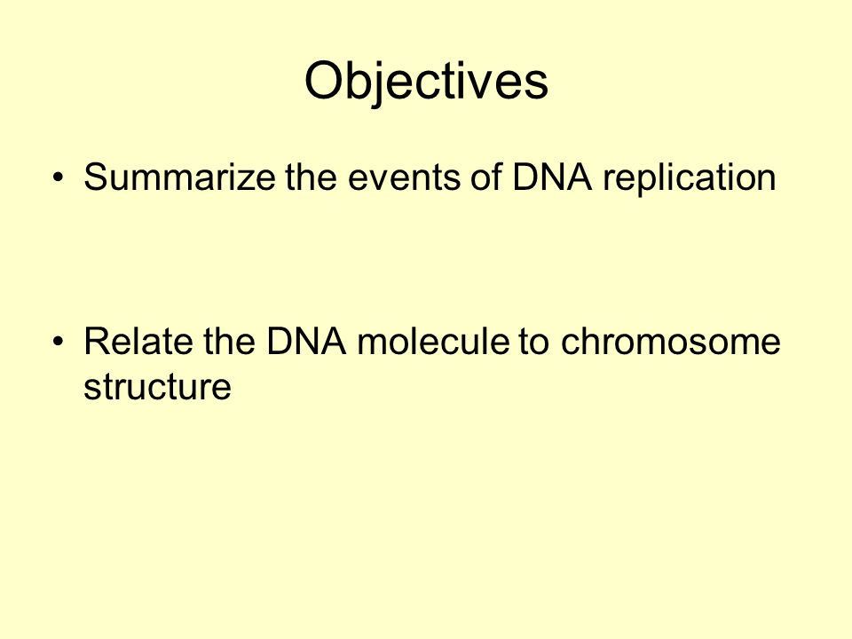Objectives Summarize the events of DNA replication