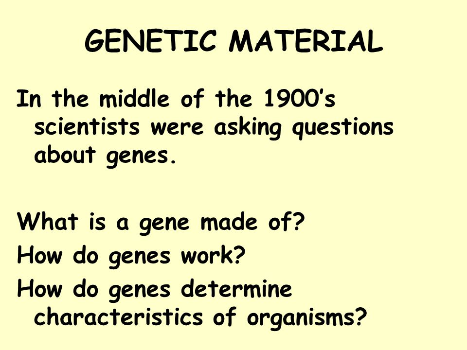 GENETIC MATERIAL In the middle of the 1900's scientists were asking questions about genes. What is a gene made of