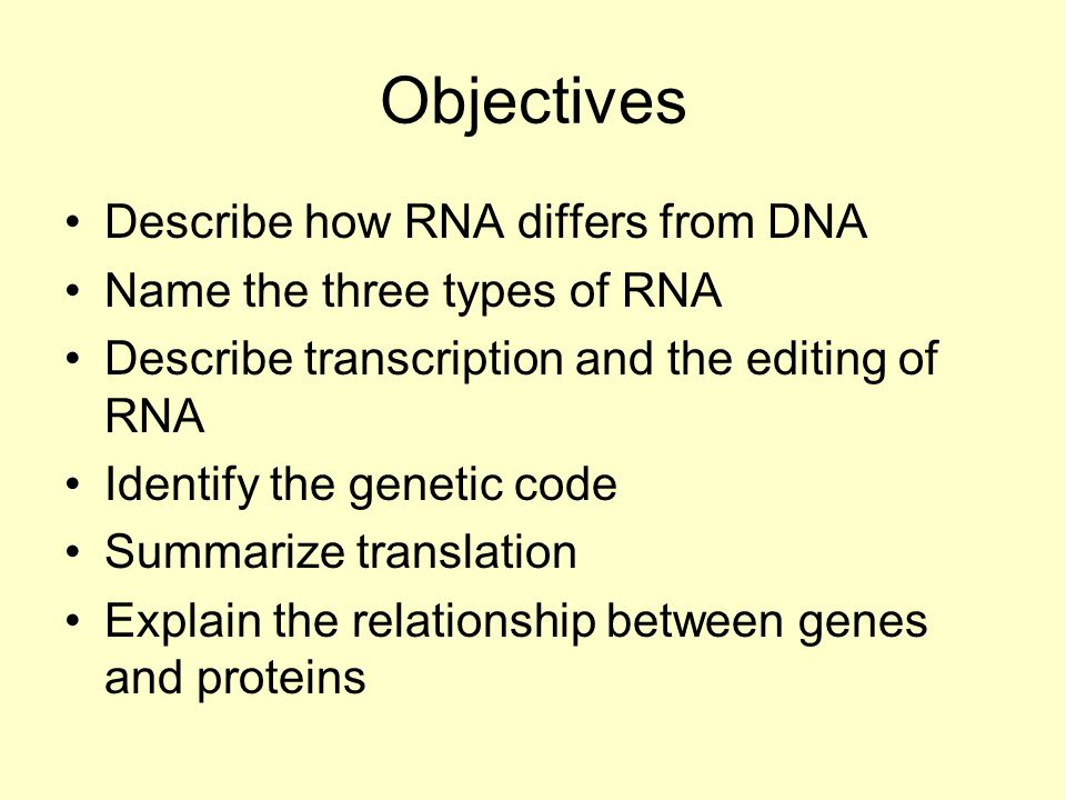 Objectives Describe how RNA differs from DNA