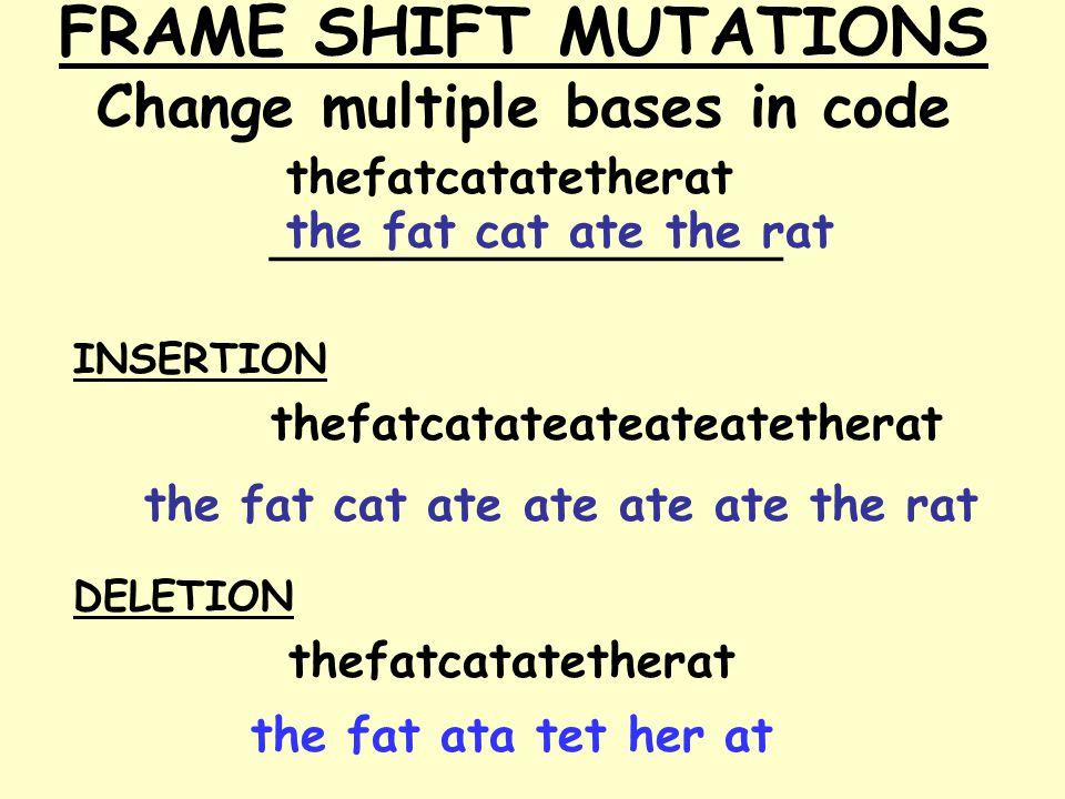 FRAME SHIFT MUTATIONS Change multiple bases in code