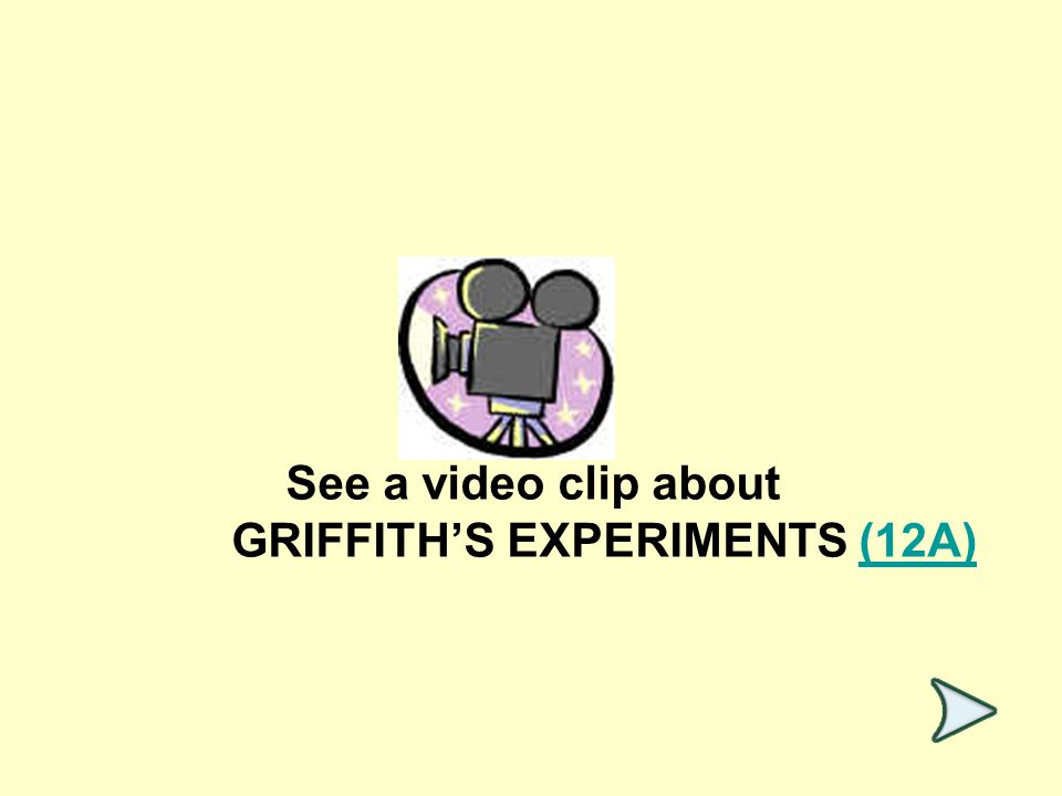 See a video clip about GRIFFITH'S EXPERIMENTS (12A)