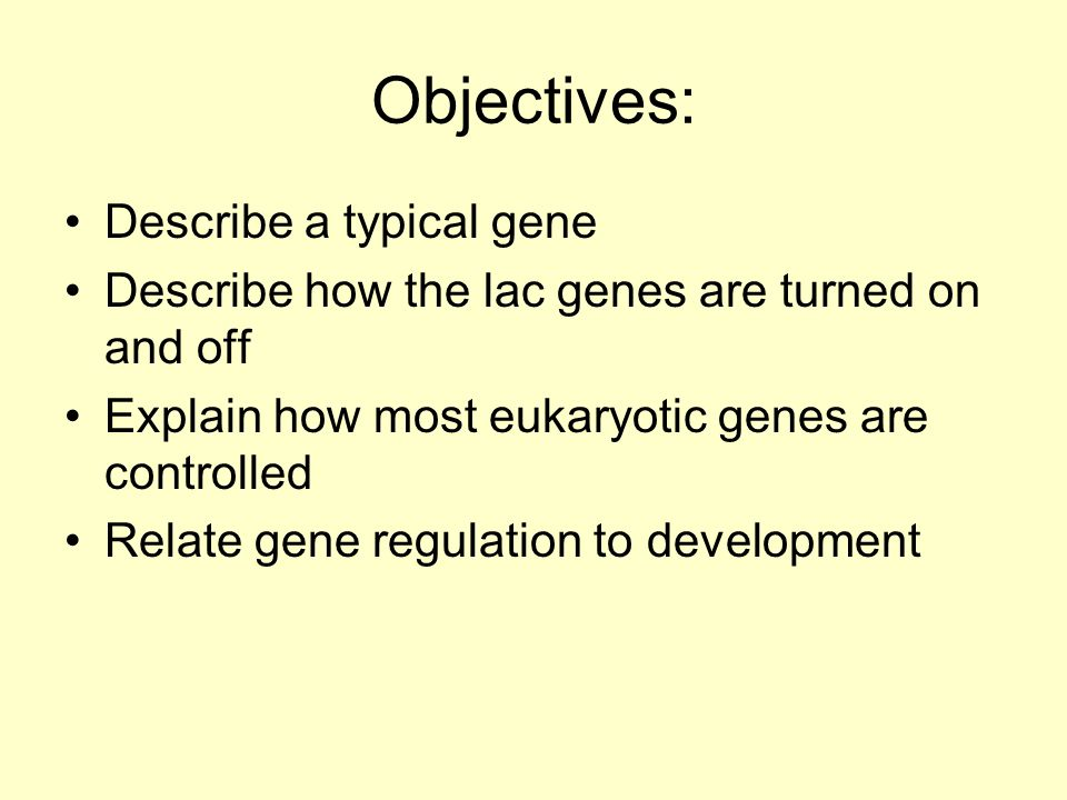 Objectives: Describe a typical gene