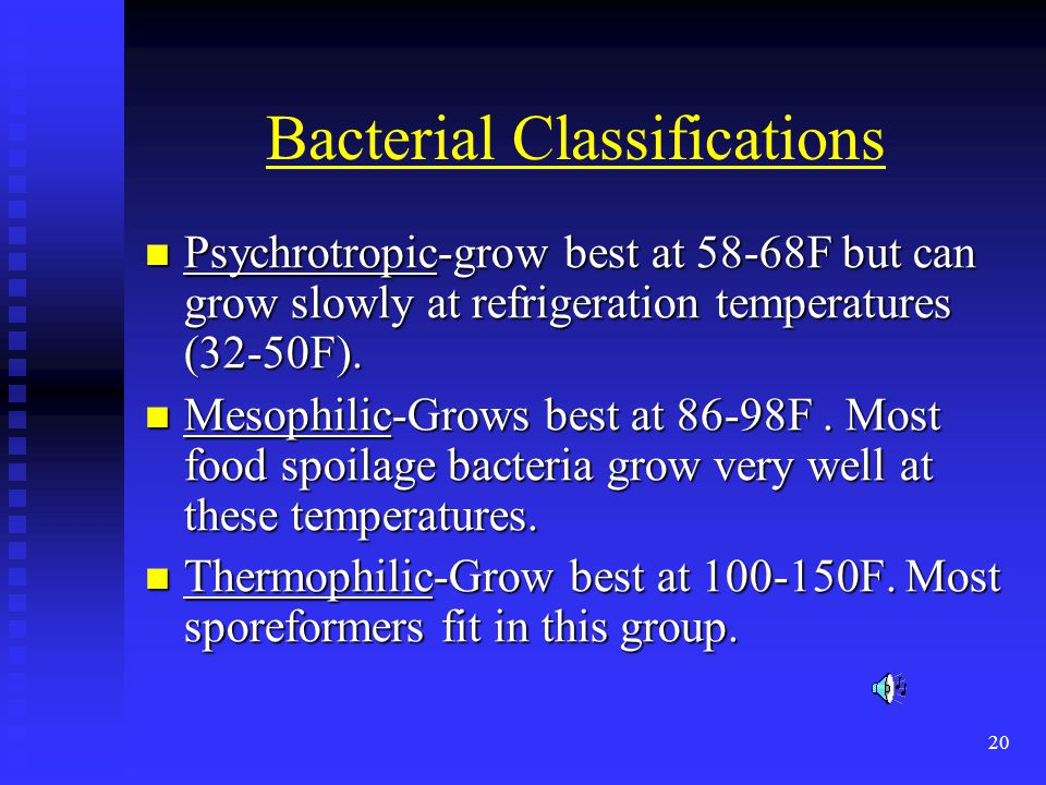 Bacterial Classifications