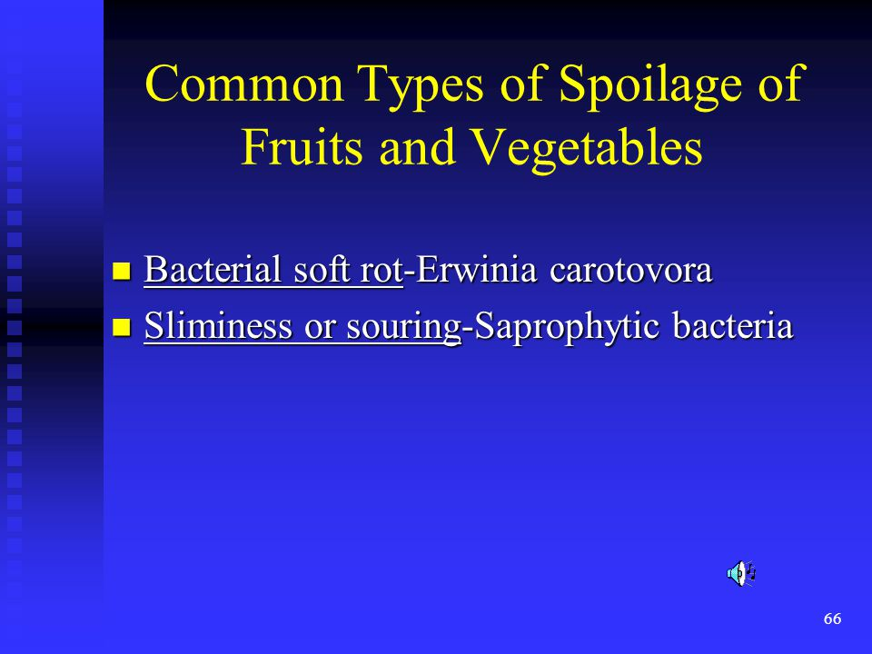 Common Types of Spoilage of Fruits and Vegetables