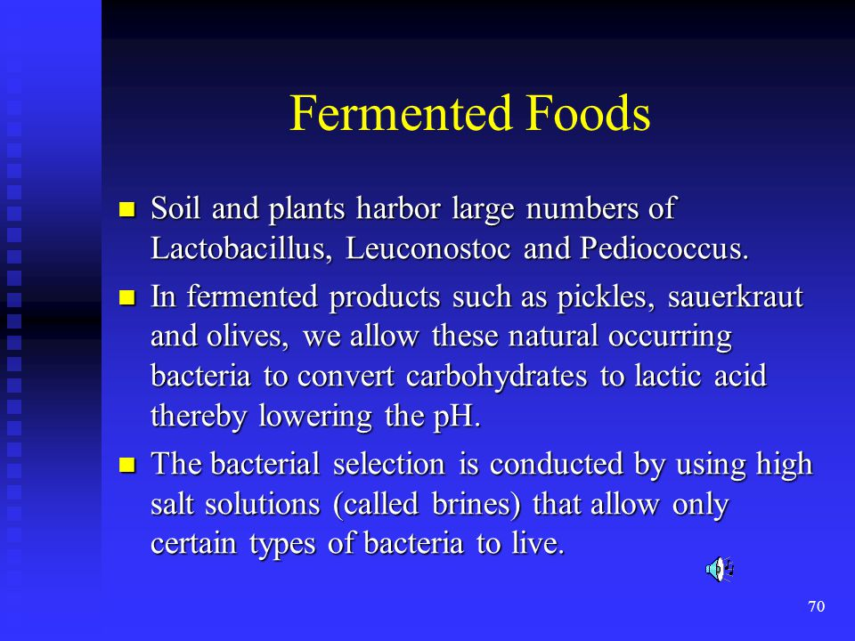 Fermented Foods Soil and plants harbor large numbers of Lactobacillus, Leuconostoc and Pediococcus.