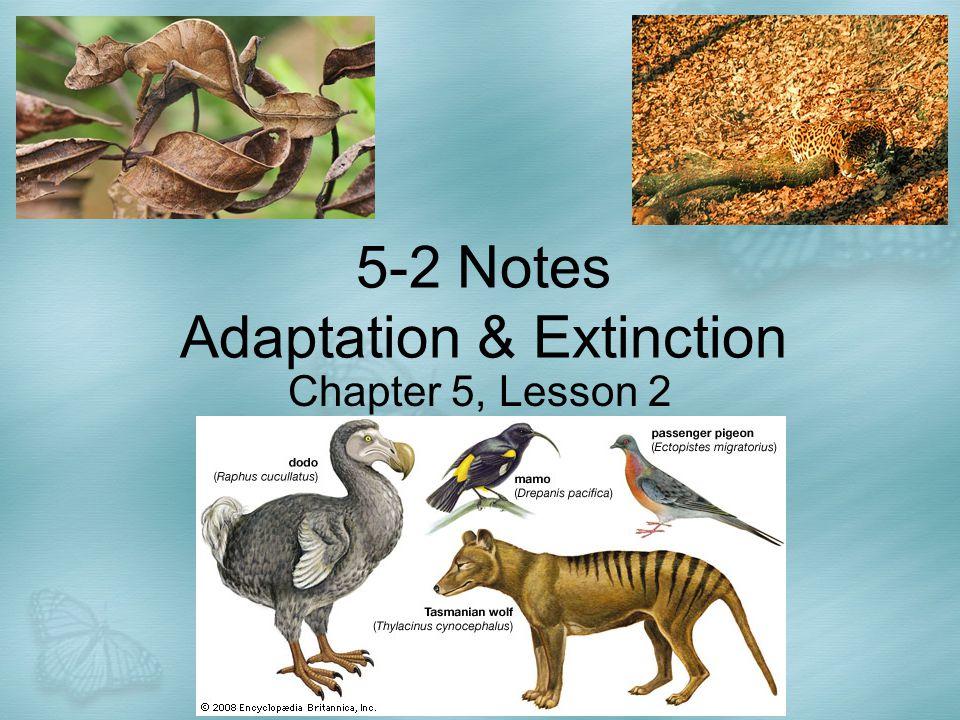 5-2 Notes Adaptation & Extinction