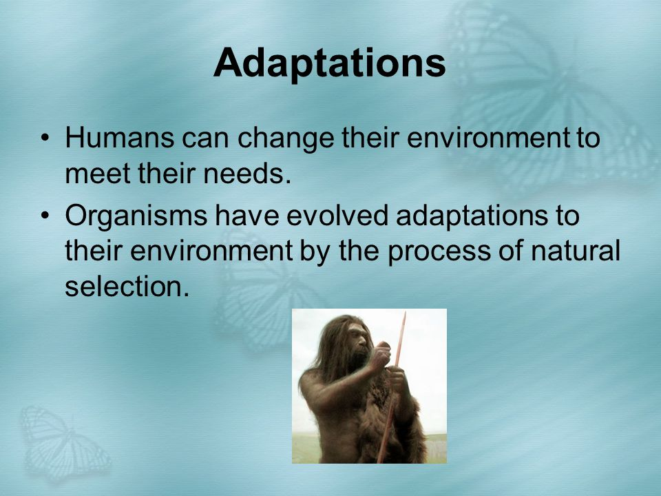 Adaptations Humans can change their environment to meet their needs.