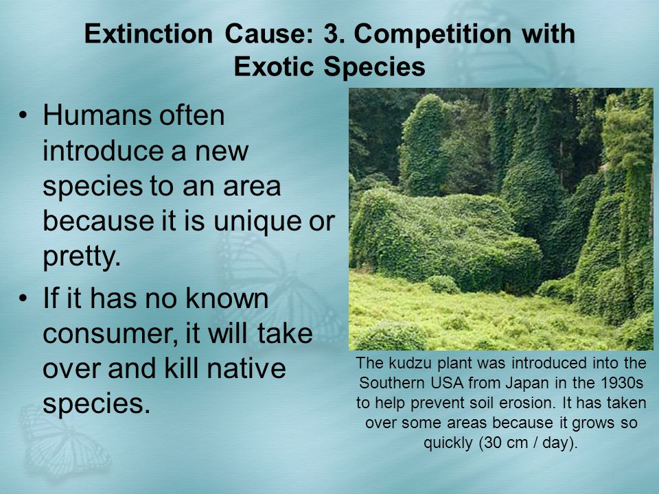 Extinction Cause: 3. Competition with Exotic Species