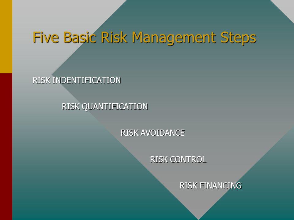 Five Basic Risk Management Steps